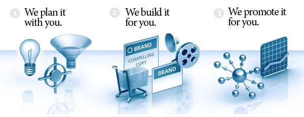 website designing & development company Chandigarh